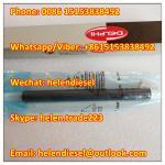 DELPHI injector EJBR04401D , R04401D, A6650170221 , 6650170221, A665 017 0221,