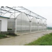 Quality Dutch Bucket Hydroponics For Tomato Planting for sale