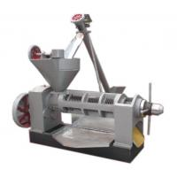 Quality ZX130 screw oil press, oil expeller for sale