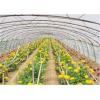 Quality Mulch Jumbo Rolling Plastic Greenhouse Film With High Impact Resistance for sale