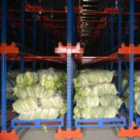 China Automatic Warehouse Shuttle System  ASRS  Automated Storage And Retrieval on sale