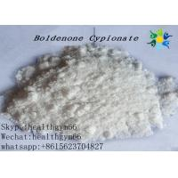 Quality Bold Cyp Boldenone Steroid To Gain Weight , Boldenone Powder MF C26H38O3 for sale
