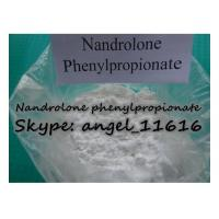 Quality CAS 62-90-8 DECA Hormone Steroid Nandrolone phenylpropionate For Cutting Cycle NPP for sale