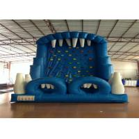 Quality Blue Rock Climbing Bounce House 6 X 4m , Commercial Inflatable Ladder Climb for sale