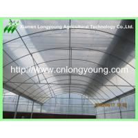 Quality large plastical greenhouse hot sale for sale