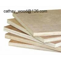 Plywood, Film Faced Plywood
