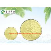Quality Natural Sophora Japonica Extract , Pure Plant Extracts 95% Quercetin Antioxidant for sale