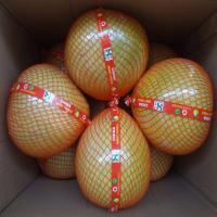 China Global GAP Certified Fresh Style Delicious Citrus Fruit , High Grade Sweet Honey Pomelo on sale