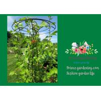 Quality Flower Supports Plant Stakes , Tall Plant Support For Climbing Plants for sale
