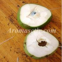 China Coconut Oil on sale