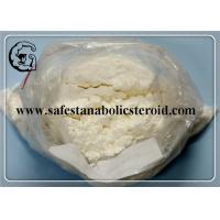 Quality Local Anesthetic Anti-Paining Powder Benzocaine CAS 94-09-7 with Best Offer for sale
