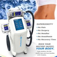 Quality Non Surgical Cryolipolysis Fat Freezing Machine / Body Slimming Equipment 230VAC 50Hz for sale