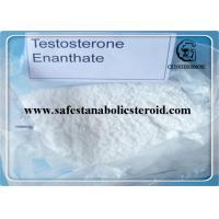 Quality Bulking Cycle Steroids Test E 99% Primoteston Depot  CAS 315-37-7 for Muscle Growth for sale