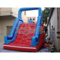 Quality Challenge Obstacle inflatable slide for sale