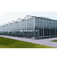 Buy Single Span Vegetable Plastic Cover Greenhouse High Production With Shading System at wholesale prices