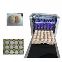 China Eggs Batch Code Food Inkjet Printer , Continuous Laser Marking Machine on sale