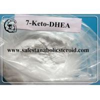 Quality 7 Keto DHEA Raw Steroid Powders CAS 566-19-8 7-Keto-Dehydroepiandrosterone Hormones for sale