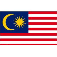 Quality Multinational China to Malaysia DHL Courier Service , DHL worldwide express for sale