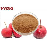 Quality C6H13NO3 Hawthorn Extract Powder For Men And Women Prevents Atherosclerosis for sale