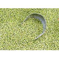 Buy Green mung beans at wholesale prices