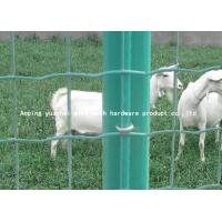 Quality Anti Corrosion Holland Wire Mesh , Welded Wire Fence Panels Custom Size for sale