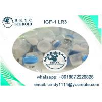 Quality Human Growth Hormone Peptides Steroids IGF-1 LR3  For Fat Loss And Bodybuilding for sale