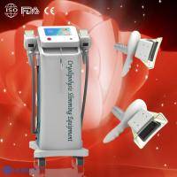 Quality Hottest selling cryolipolysis slimming machine totally same as American coolsculpting for sale