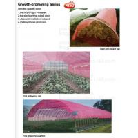 China 100% Biodegradable mulch, biological degradation processes, fruit box,flower pot,jute cloth,cultivating bag,jute net,net on sale