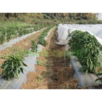 Buy cheap Landscaping Agriculture Non Woven Fabric / Recycled Polypropylene Fabric from wholesalers