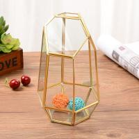 China Golden Geometric Glass Terrarium Home Decorative Tabletop Flower Pot for sale