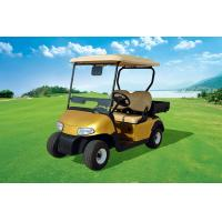 Quality New Design 2 Seats Electric Utility Golf Cart With Rear Plastic Cargo Box for sale