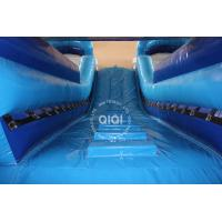 Buy Classic Double-Lane Water Slide For sale canada at wholesale prices