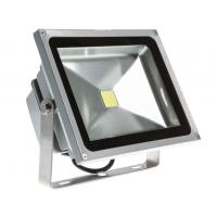 Quality Outdoor 30 W Daylight LED Flood Light 304 Stainless Screws Die-casting for sale