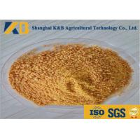 Quality Food Grade Corn Protein Powder Contains Lutein Improve Poultry Disease - Resistant for sale