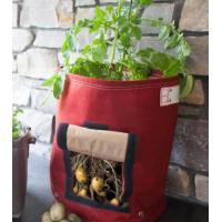 Quality Multi Color Plant Grow Bags Gardening Non - Woven Material Customized Volume for sale