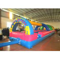 Quality Inflatable slides  XS183 for sale