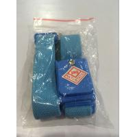 Quality blue wireless adjustable ESD nylon wrist band for sale