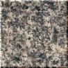Nice Leopard Skin Granite Stone for sale