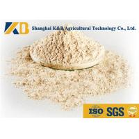 Quality No Agglomeration Or Mildew Brown Rice Powder For Pet Feeding Addictive for sale