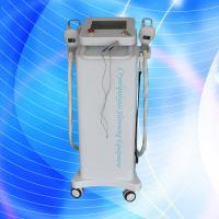 Quality Non-Invasive Cryolipolysis Slimming Machine / Fat Freeze Slimming Machine for sale