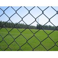 Quality PVC Coated Frame Finishing and Fencing,Trellis&Gates Type pvc coated chain link fence for sale
