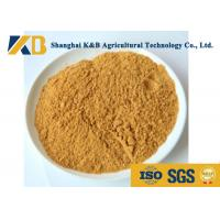 Quality Fresh Corn Protein Powder Animal Feed Supplement Less Than 20 Ppb Aflatoxin for sale