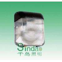 Quality Induction Lamp, Wall Light (SD-WL-501) for sale