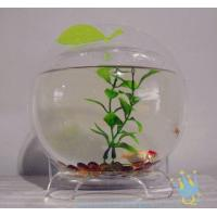 Buy Plastic modern acrylic fish tank at wholesale prices