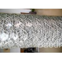 Quality White Color Plastic Poultry Netting / Chicken Wire Mesh Roll With Hexagonal Holes for sale