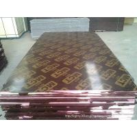 China Poplar Waterproof  Shuttering Plywood with MR / WBP / Melamine on sale