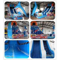 Quality Inflatable Dolphin Slide For Kids for sale