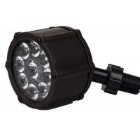 Quality 9pcs 12 Watt LED Landscape Spotlight Clear Acrylic Lens 50/60 Frequency for sale