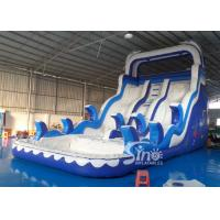 China Double Lanes Inflatable dolphin Water Slides with pool EN14960 For Adults and kids on sale