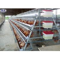 Buy cheap Nipple Drinking Poultry Laying Cages A Frame Automatic For 128 Birds from wholesalers
